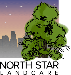 Creative 7 Designs Logo Design: North Star Landcare