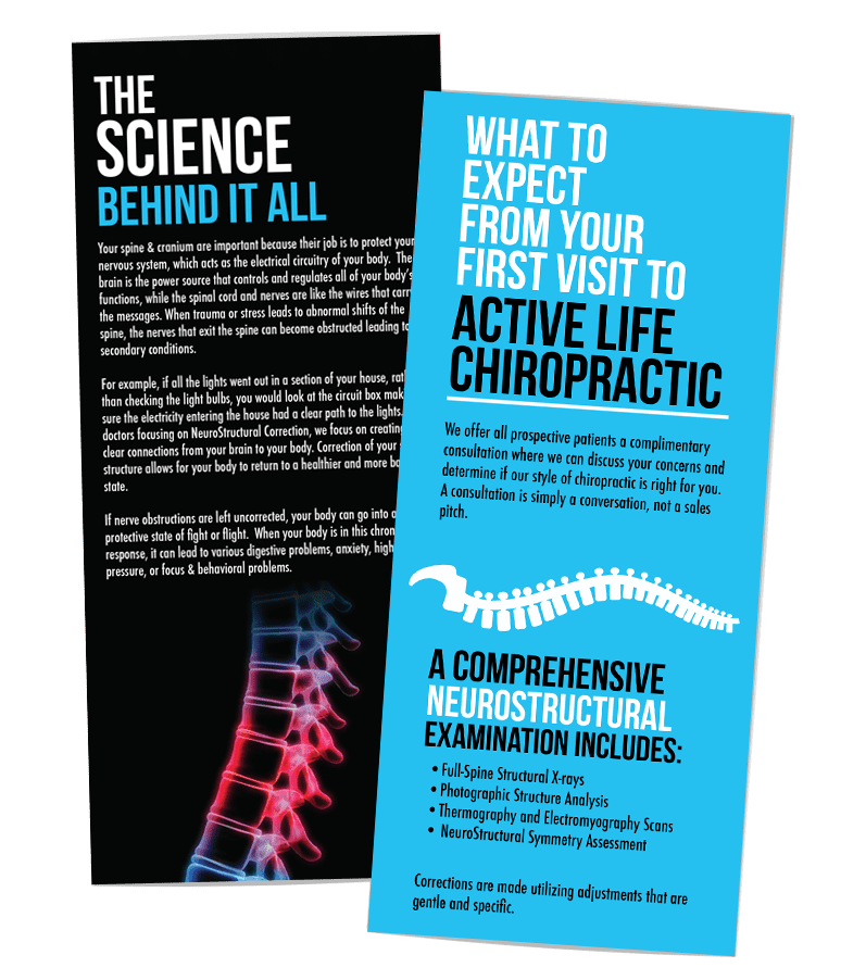 acrive life chiropractic trifold creative 7 designs marketing