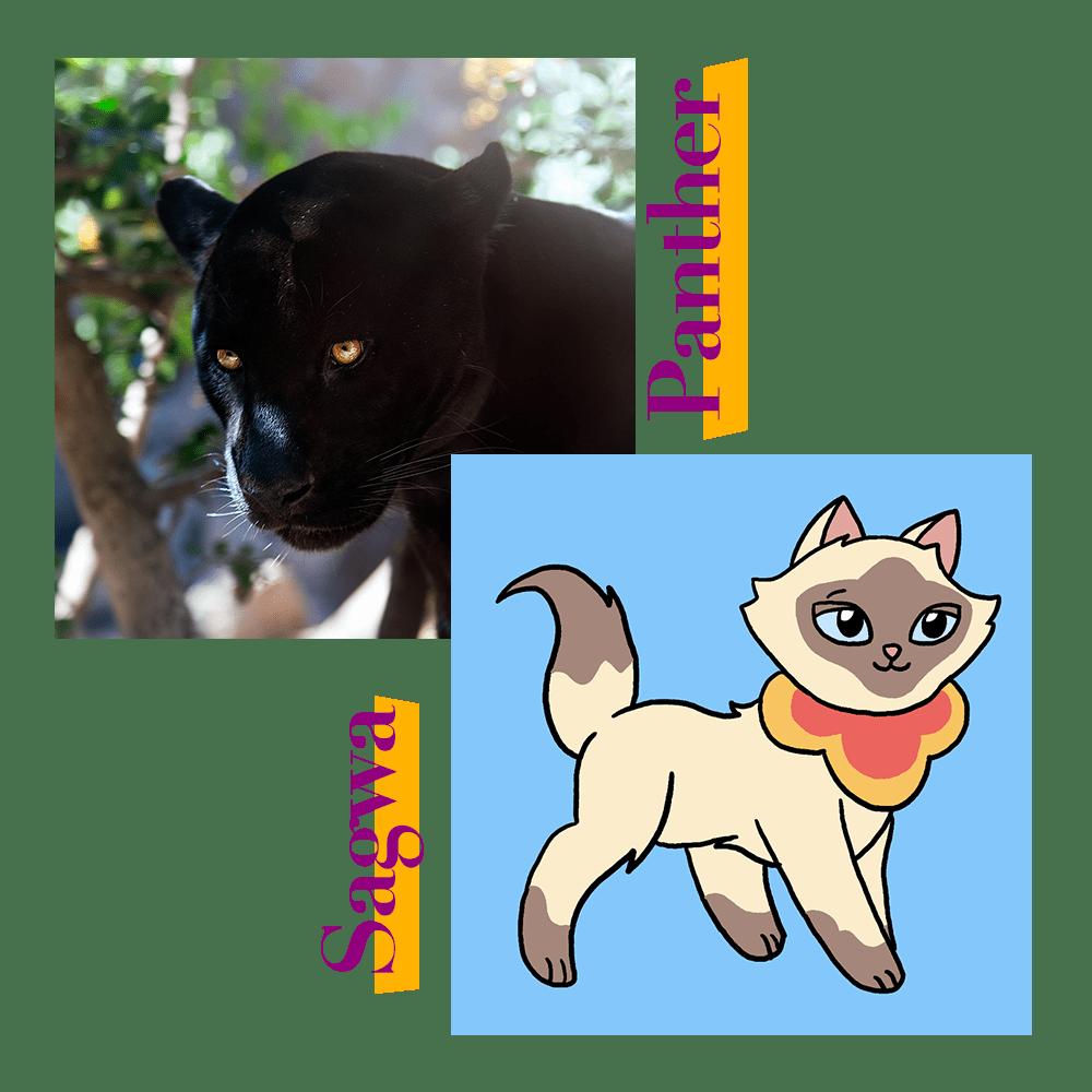 Black Panther and Sagwa Cat